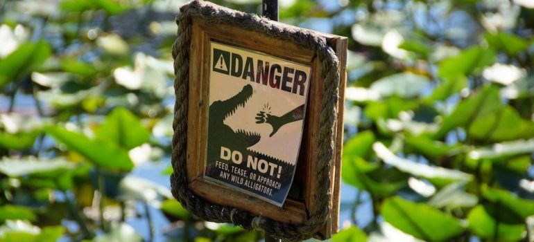 Moving from NYC to Miami: a gator warning sign