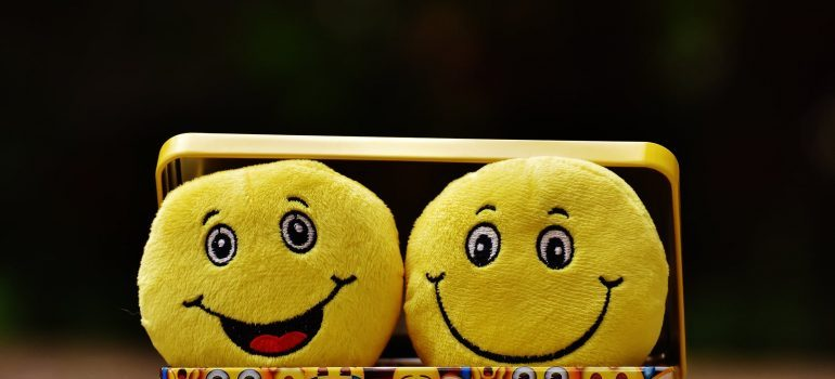 """Two """"smiley face"""" toys inside a box"""